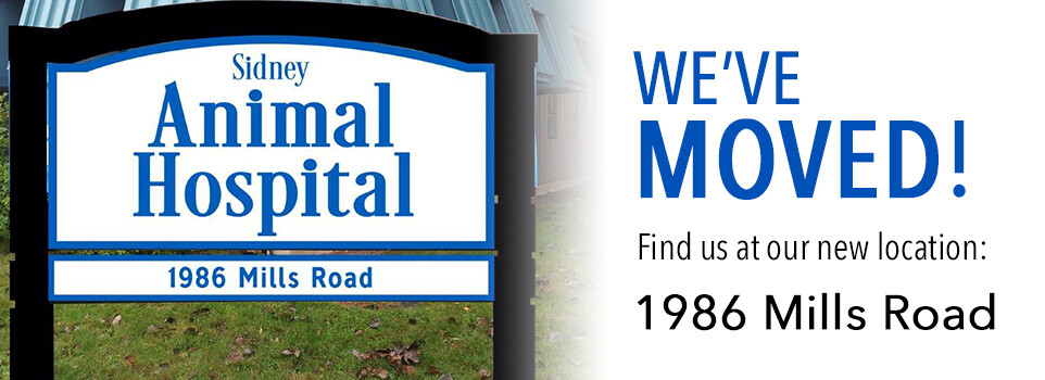 New Location: 1986 Mills Rd